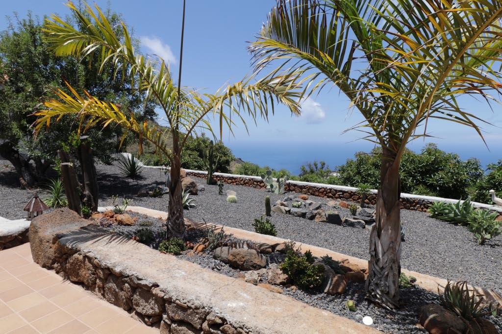 El jardín de cactus a la izquierda.